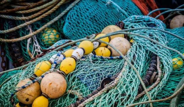 Geisternetze - eine Gefahr für die Meeresumwelt