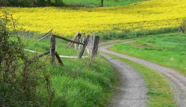 Aktionsprogramm nachhaltige Landwirtschaft