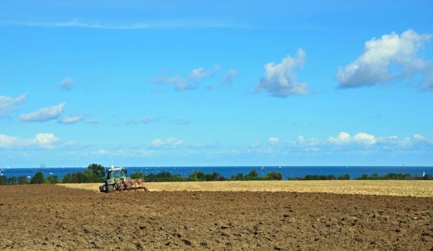 Traktor auf Feld an der Küste