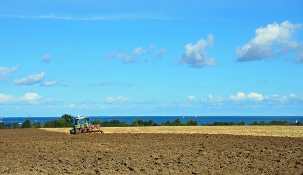 Traktor auf Feld vor Ostsee