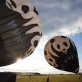 Ballonstund der WWF-Jugend Berlin