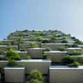 Hochhaus, Urban Gardening